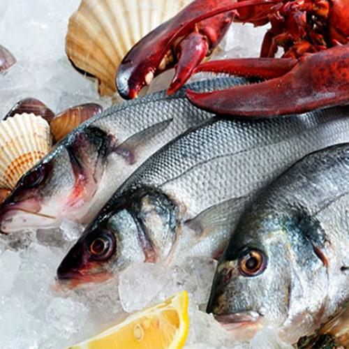 Preserved Sea Food