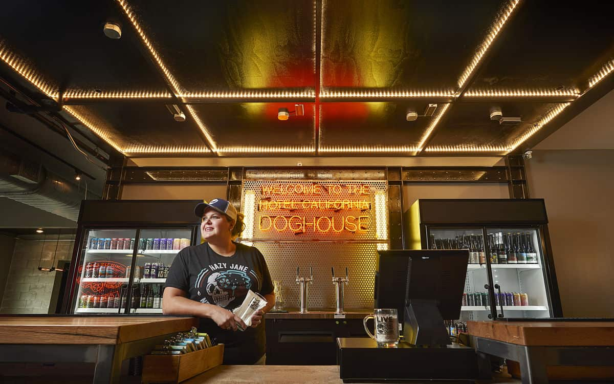 DOGHOUSE BEER HOTEL Check In Desk bar
