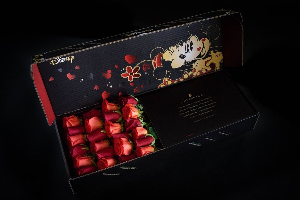 mickey-minnie-mouse-roses-in-box-checkmate-2