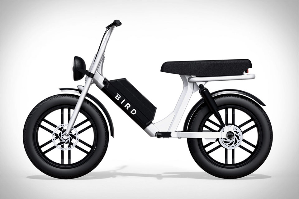 Bird Cruiser Electric Bike