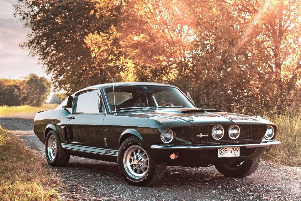 1967 Shelby Mustang GT350