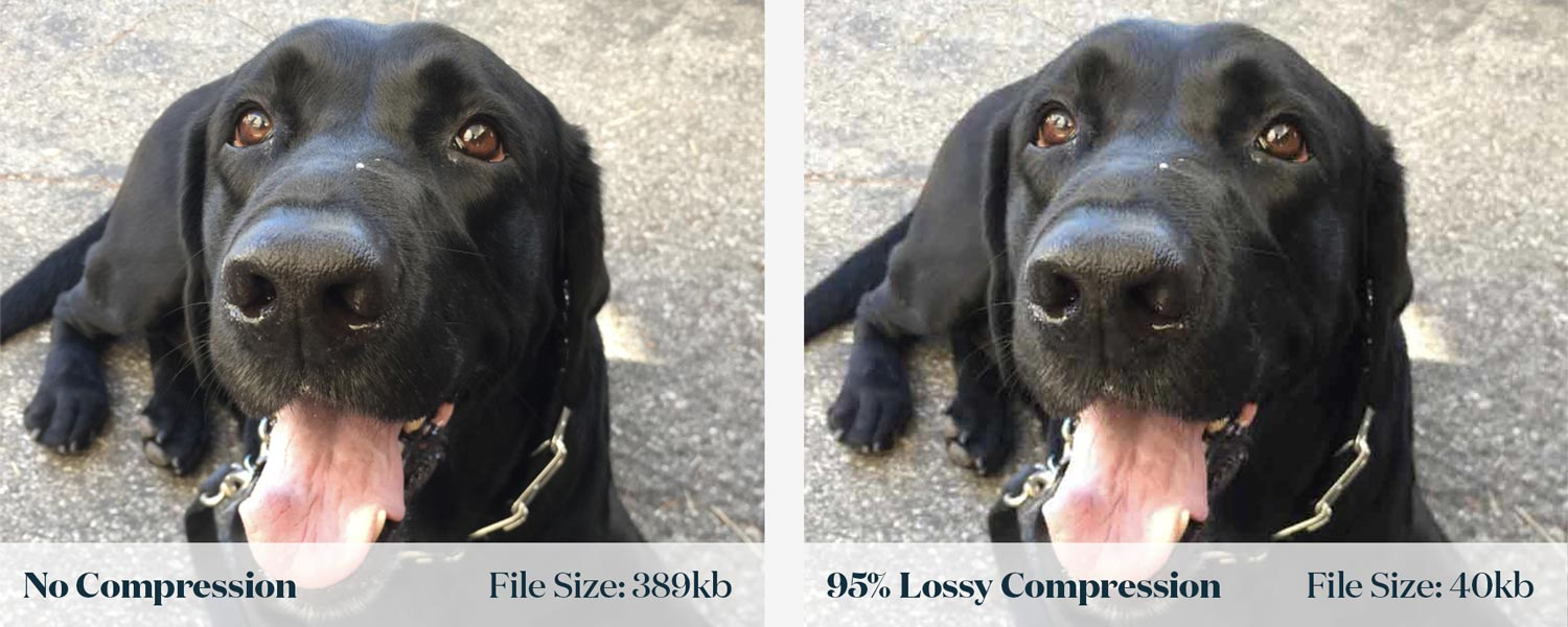 Lossy Image Comparison | JShaw Creative
