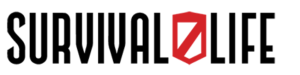 wordmark logo process