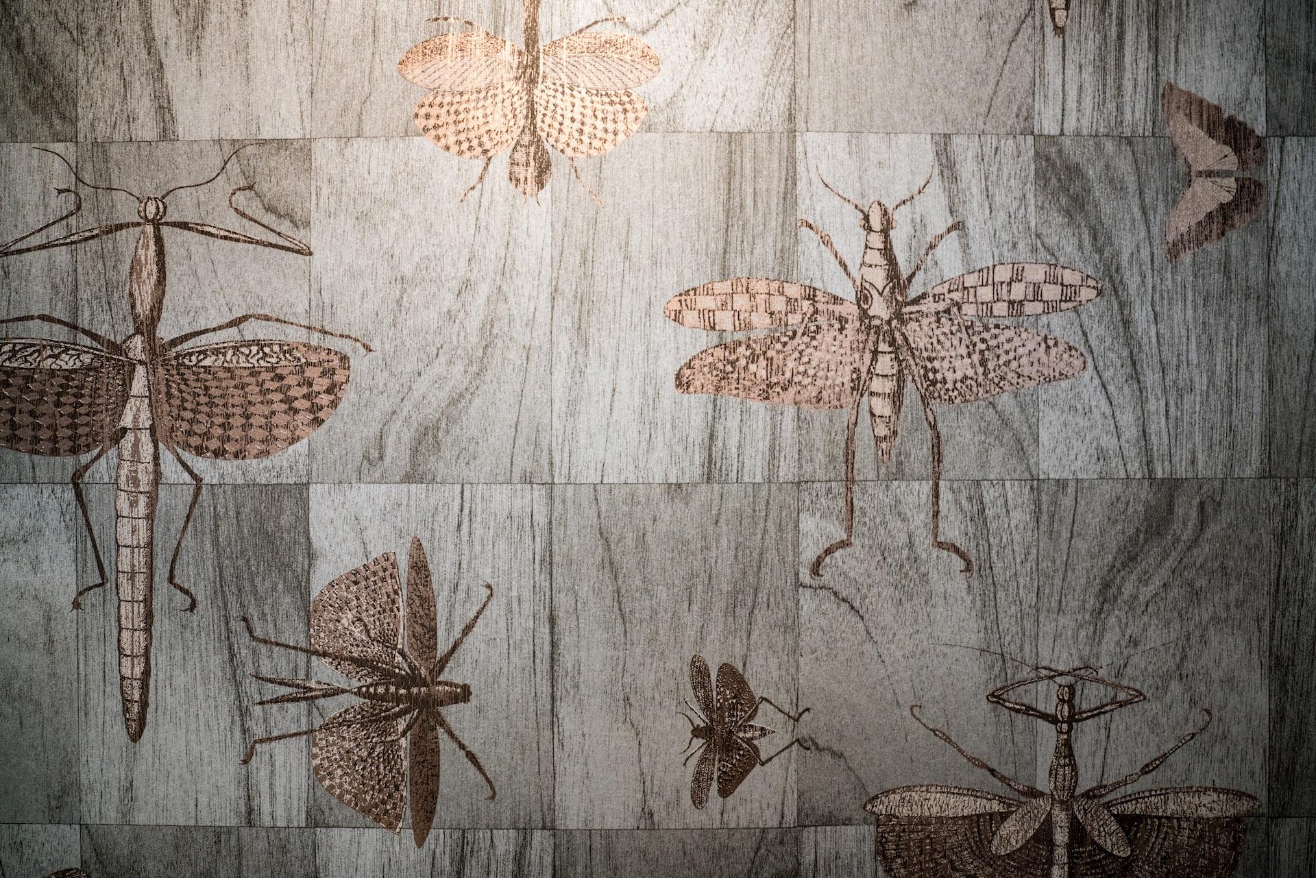 bug wallpaper