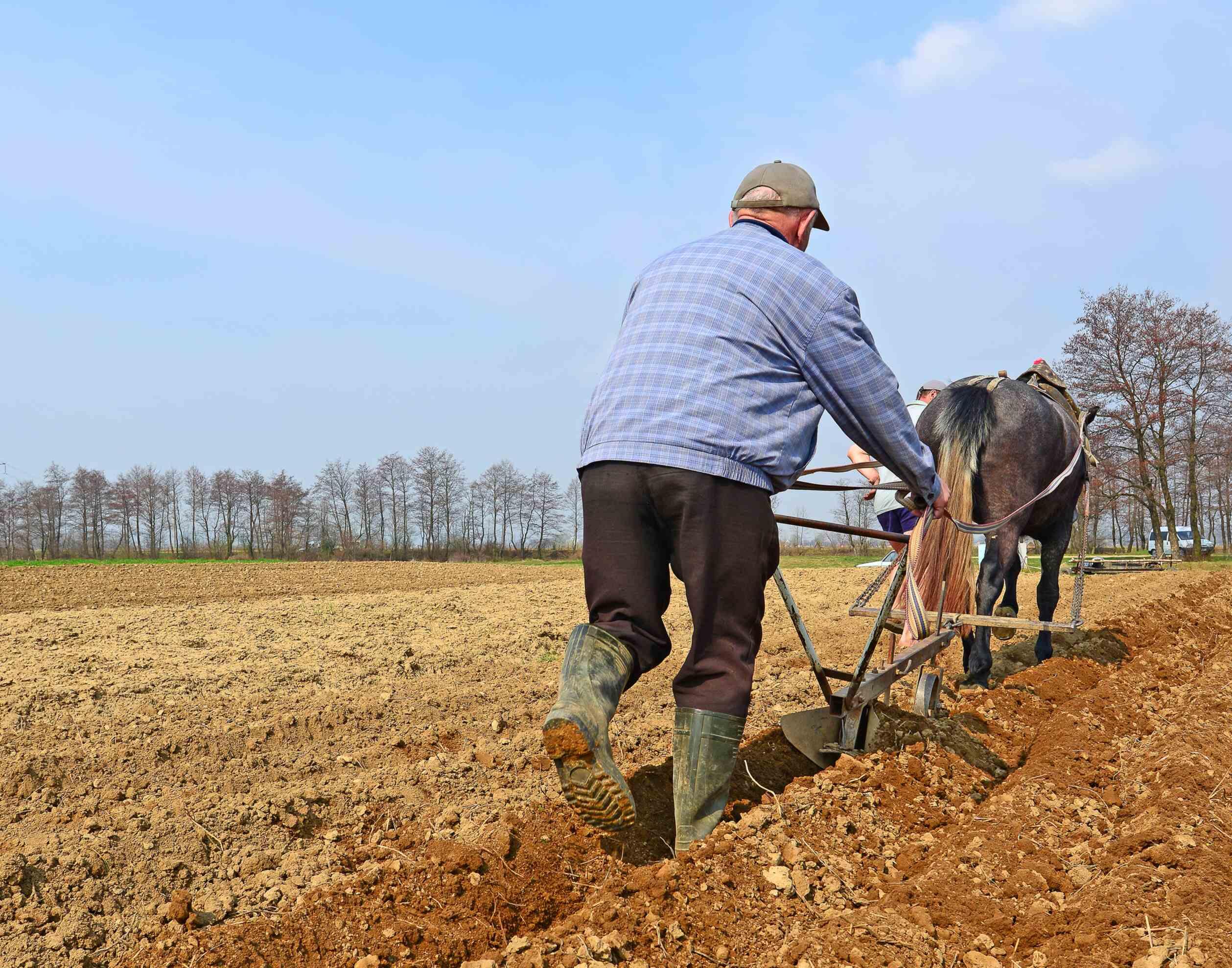 Farmer working the fields