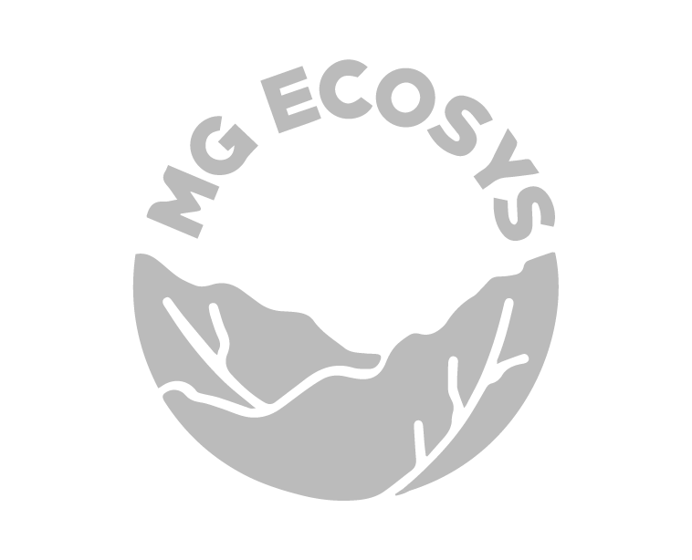 MG ecosys logo