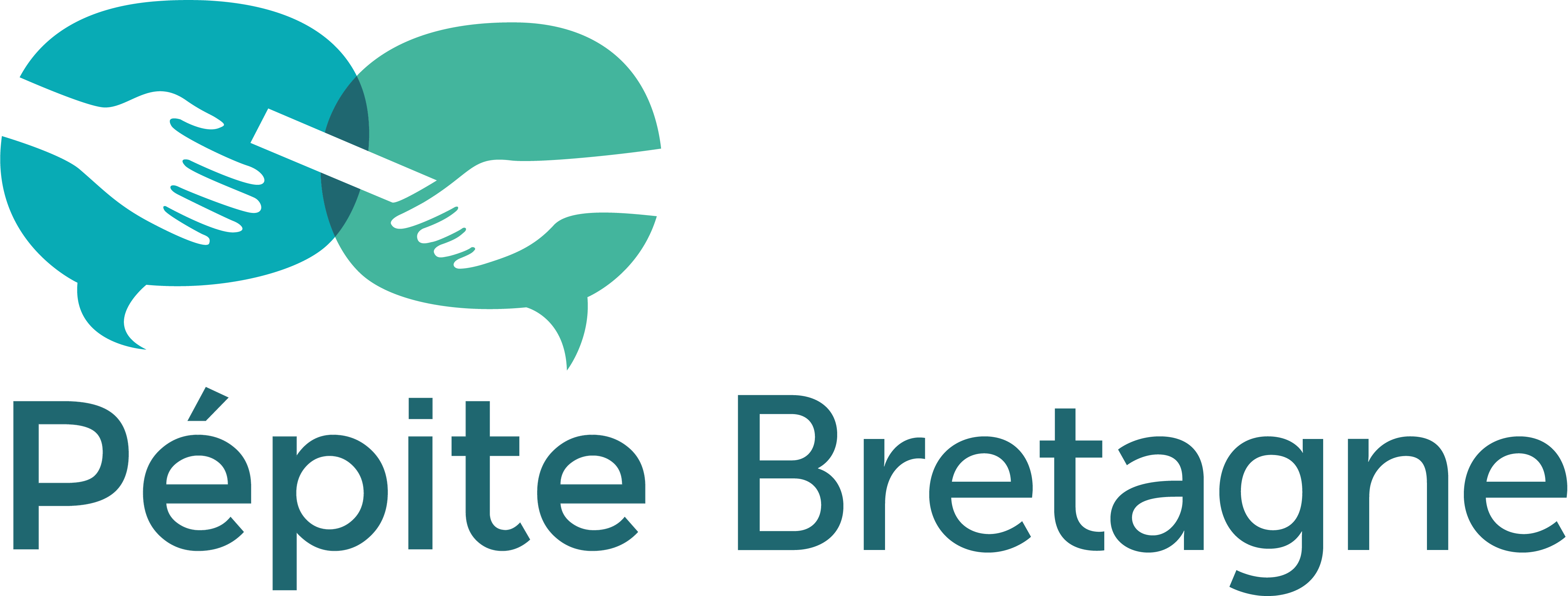 Logo Pépite Bretagne