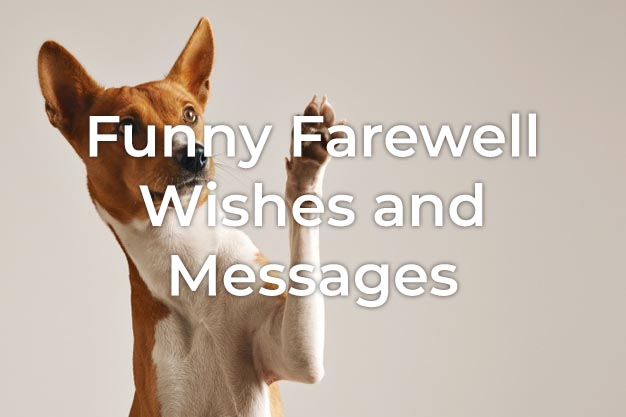 Funny Farewell Message