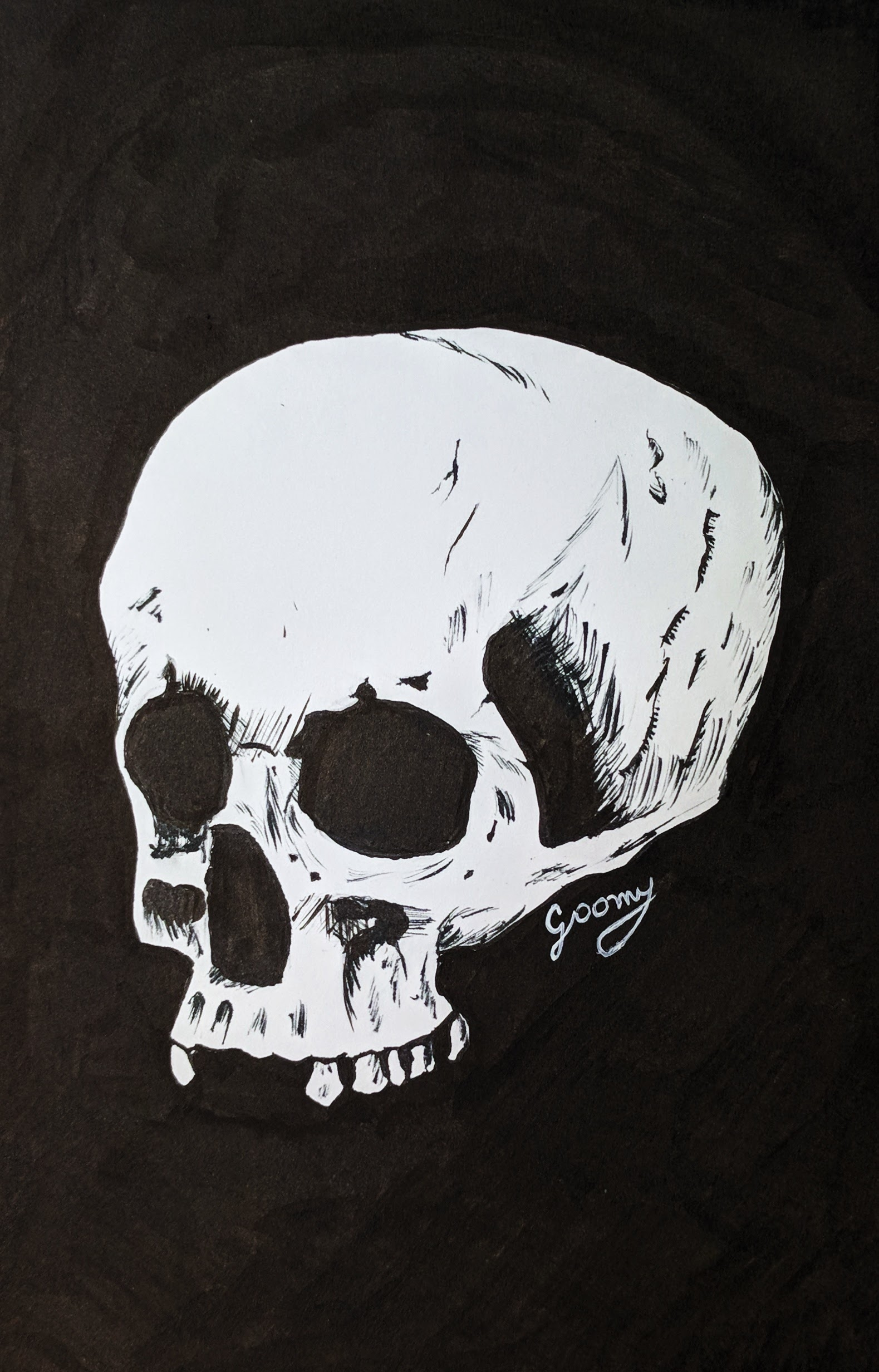 ink drawing of a skull on a black background