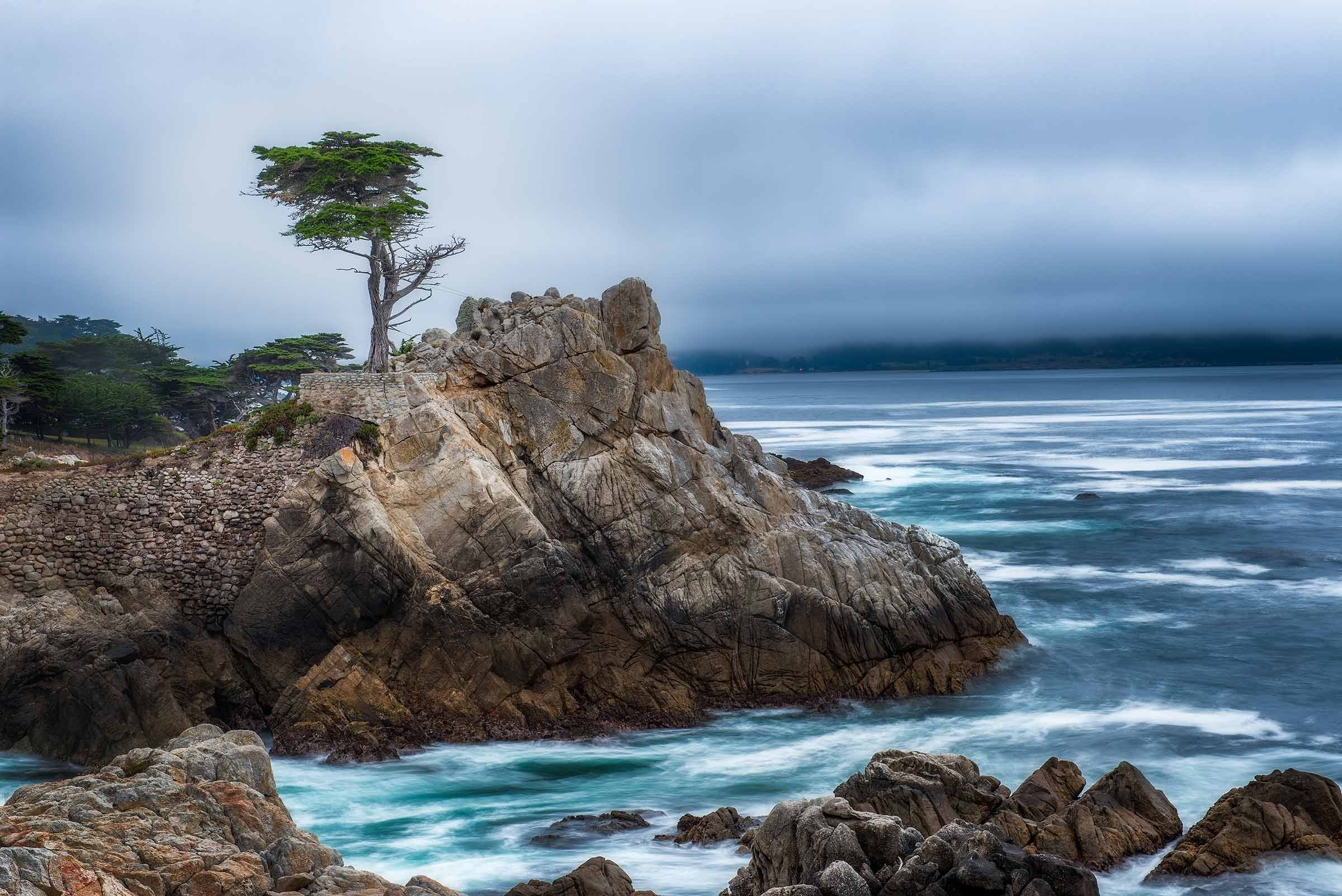 The Lone Cypress tree along the rocky coastline in Monterey, California