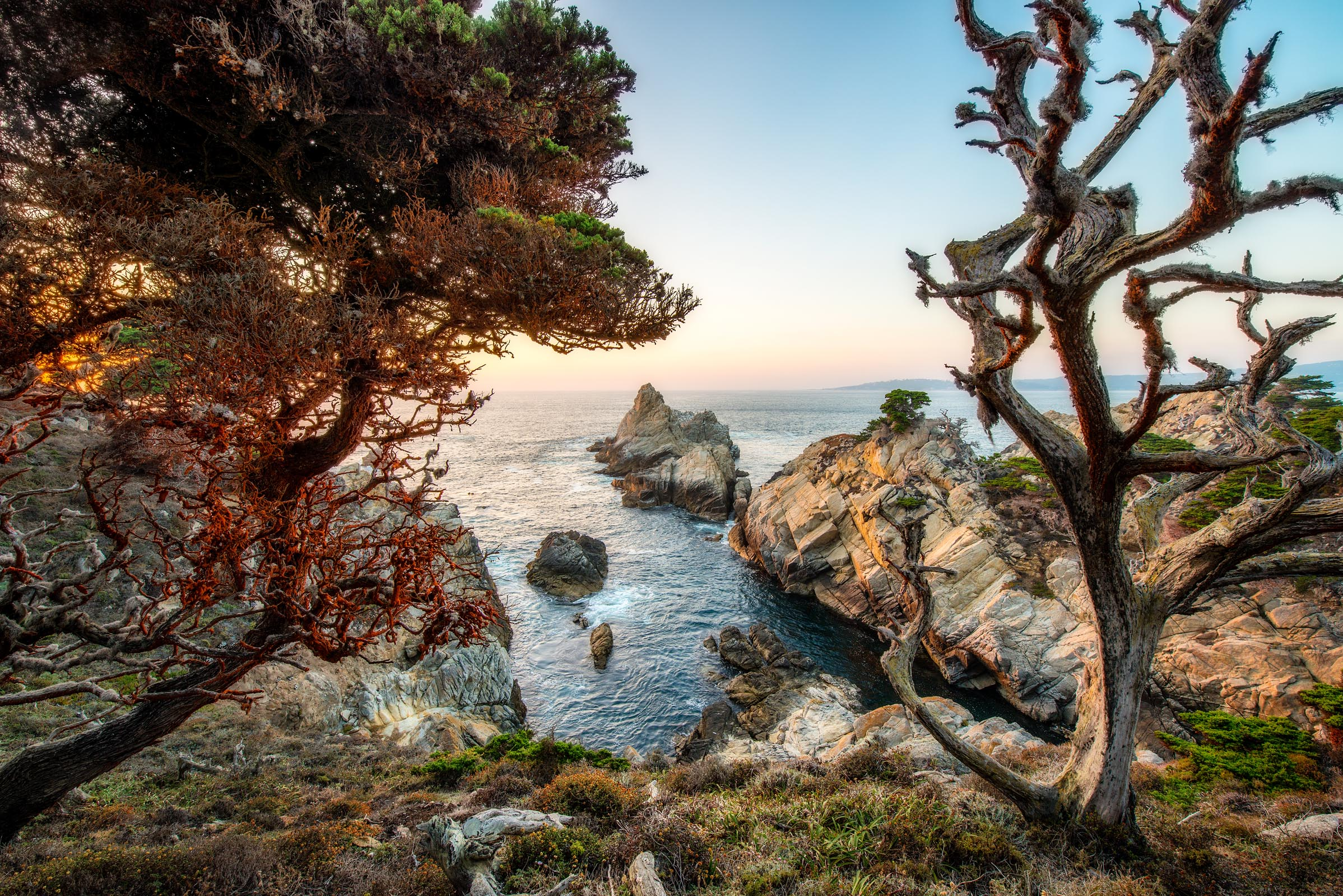 Photograph of Point Lobos in Carmel, California by Brent Goldman Photography
