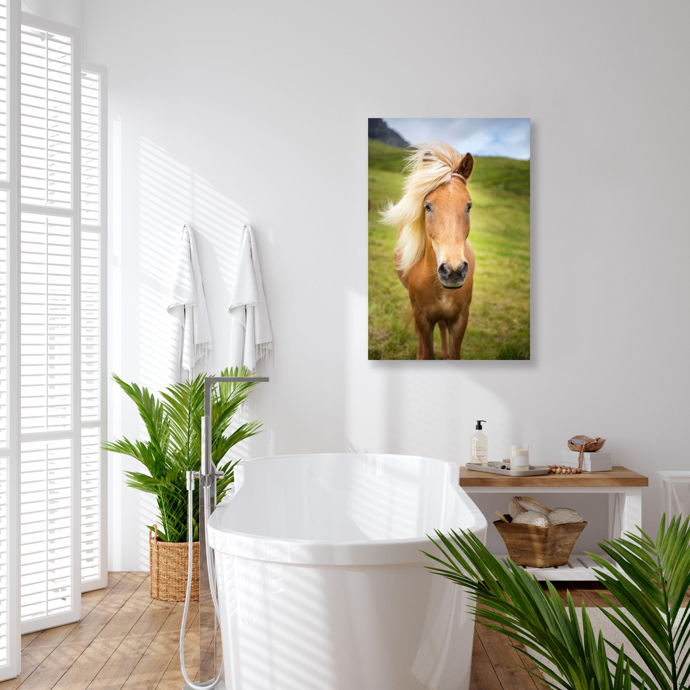 Wall art of Horse in Gasadalur, Faroe Islands by Brent Goldman Photography