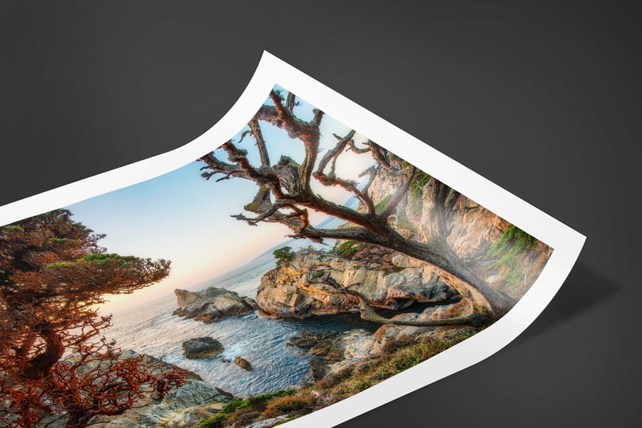 Fujiflex Crystal Archive paper print example of Point Lobos in Carmel California.