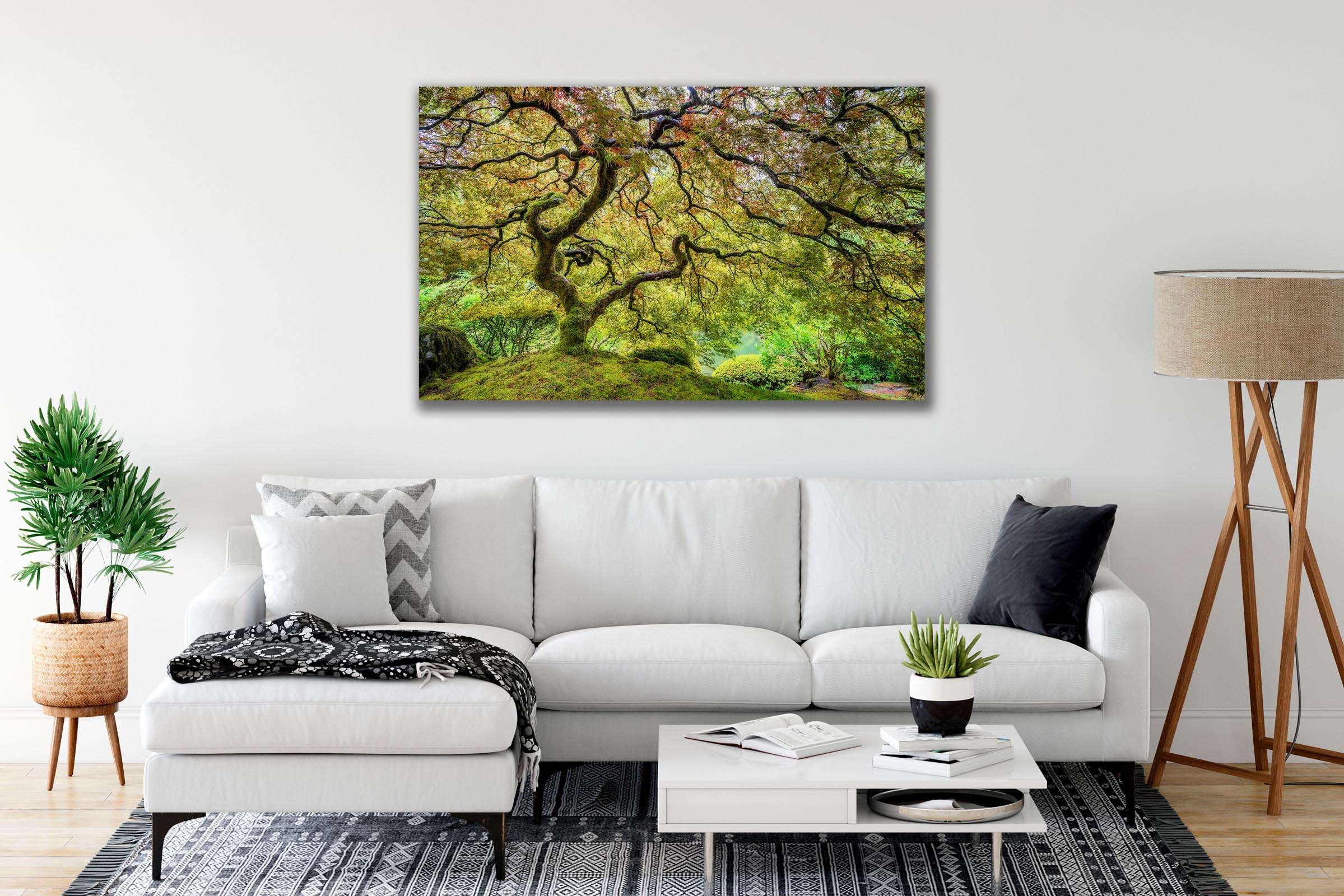 Wall art of Japanese Maple in Portland, Oregon by Brent Goldman Photography