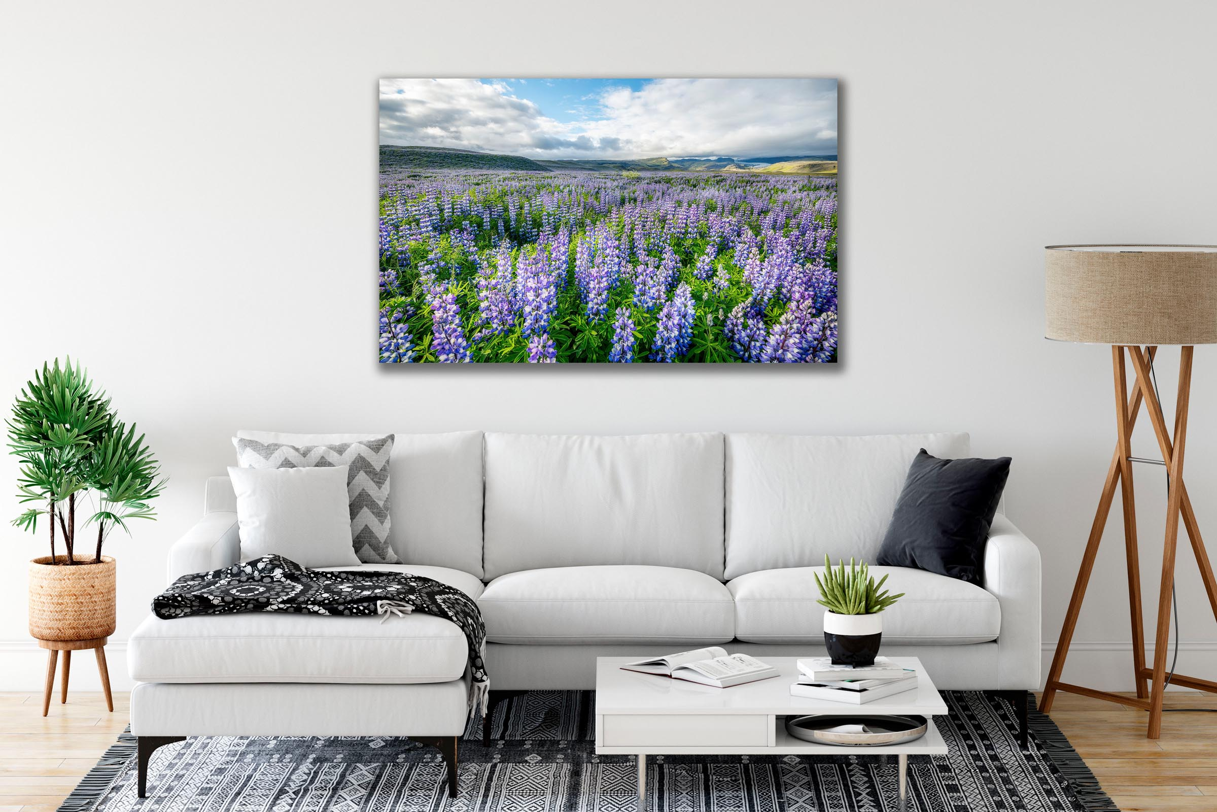 Wall art of Lupine Field in Ring Road, Iceland by Brent Goldman Photography