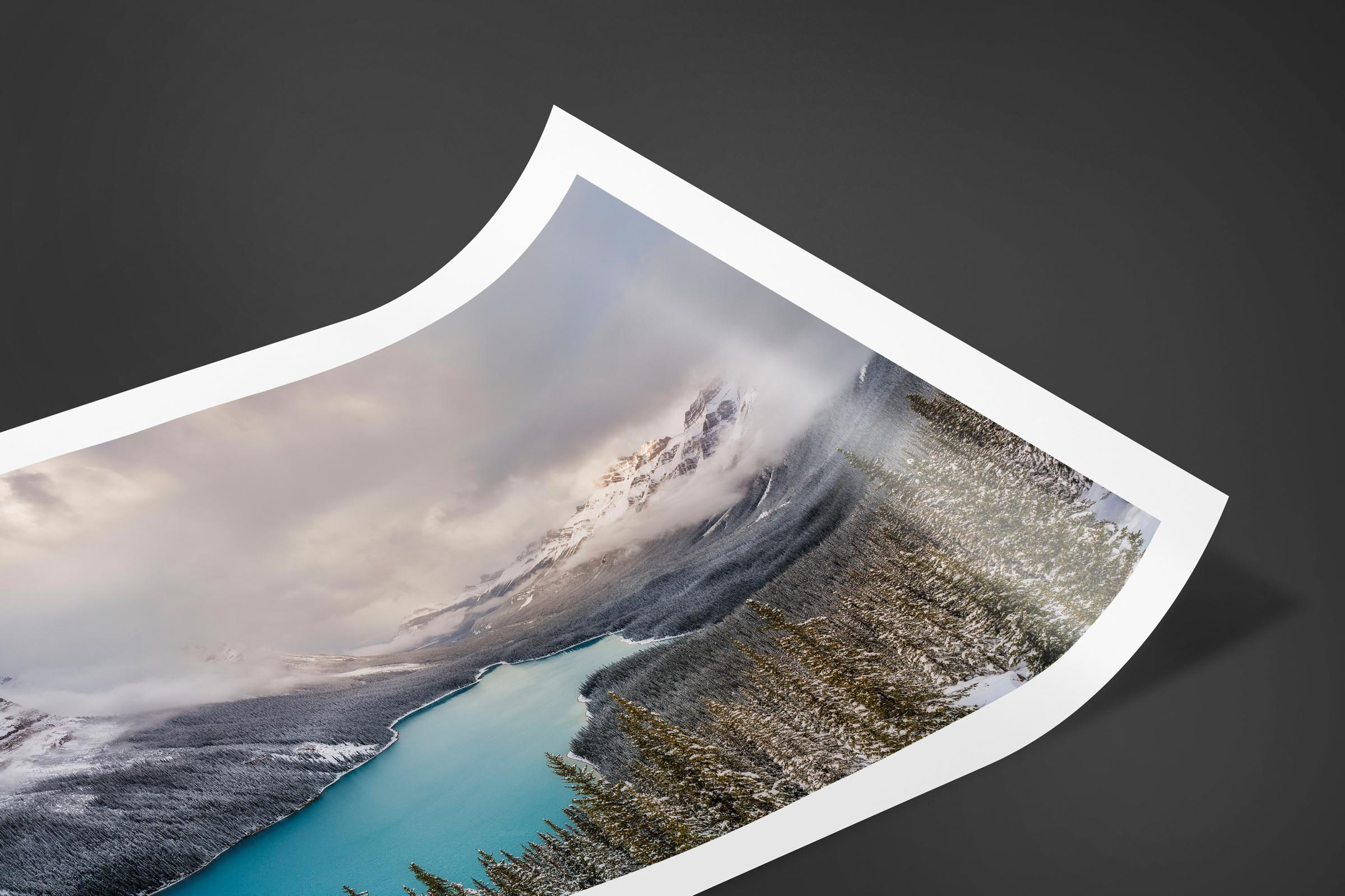 Fine art limited edition print of Peyto Lake in Banff, Canada by Brent Goldman Photography