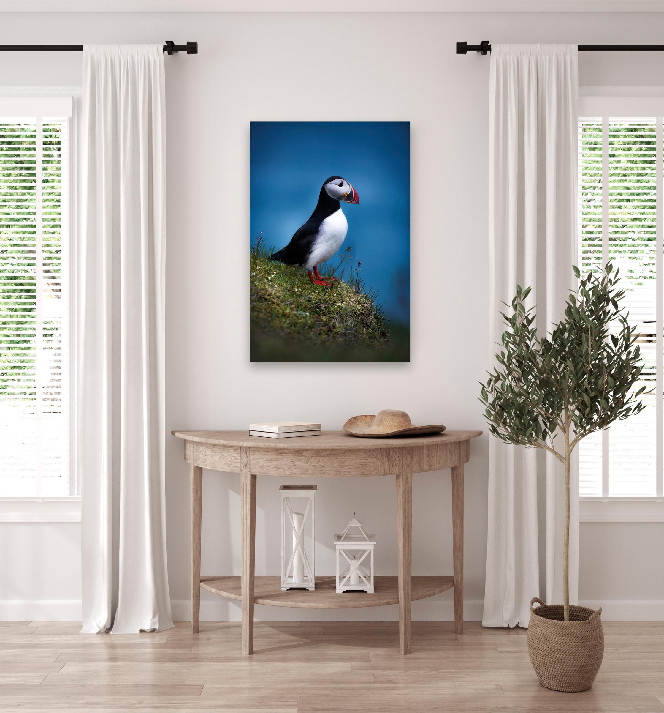 Wall art of Puffin in Vik, Iceland by Brent Goldman Photography