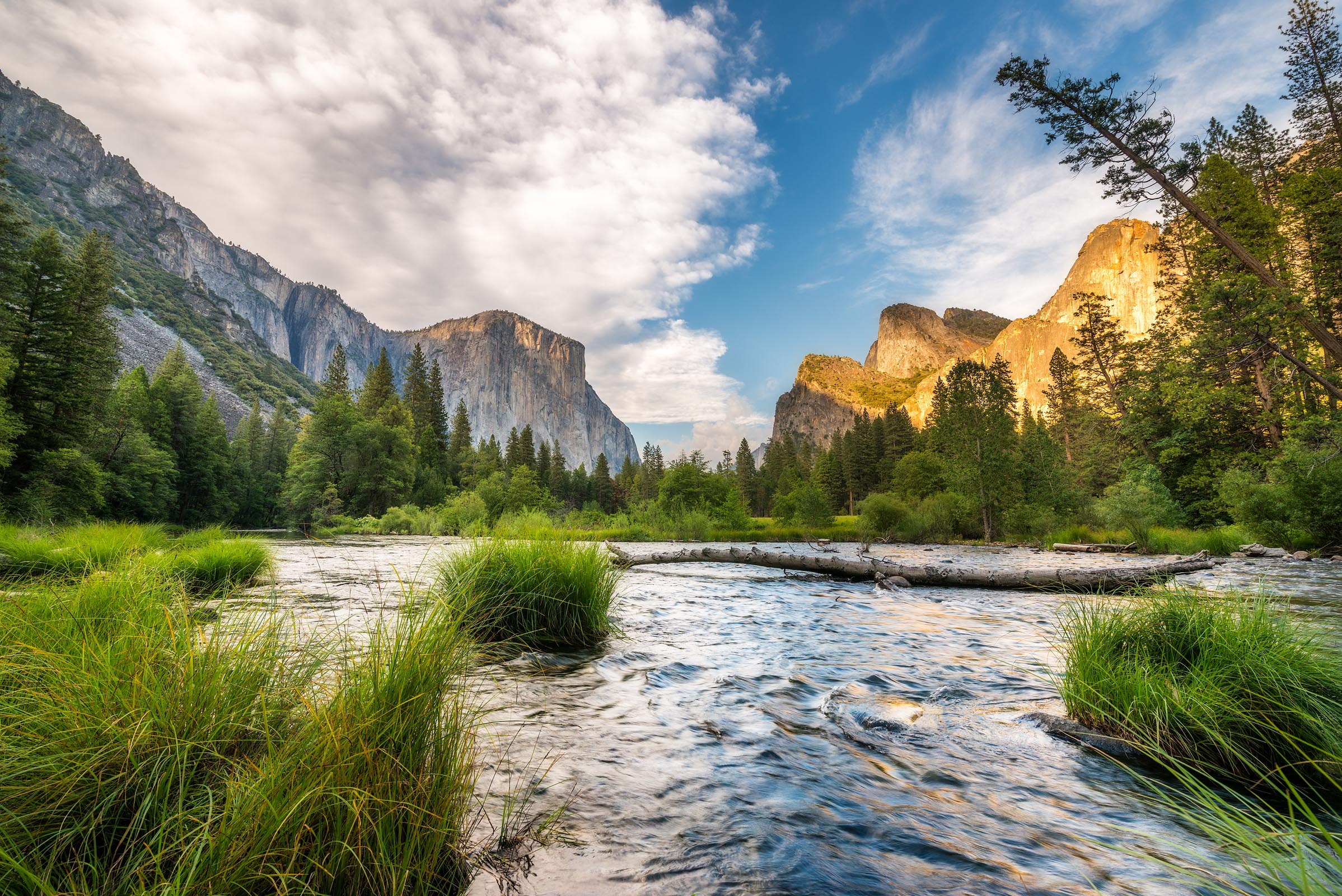 Photograph of Valley Floor in Yosemite, California by Brent Goldman Photography