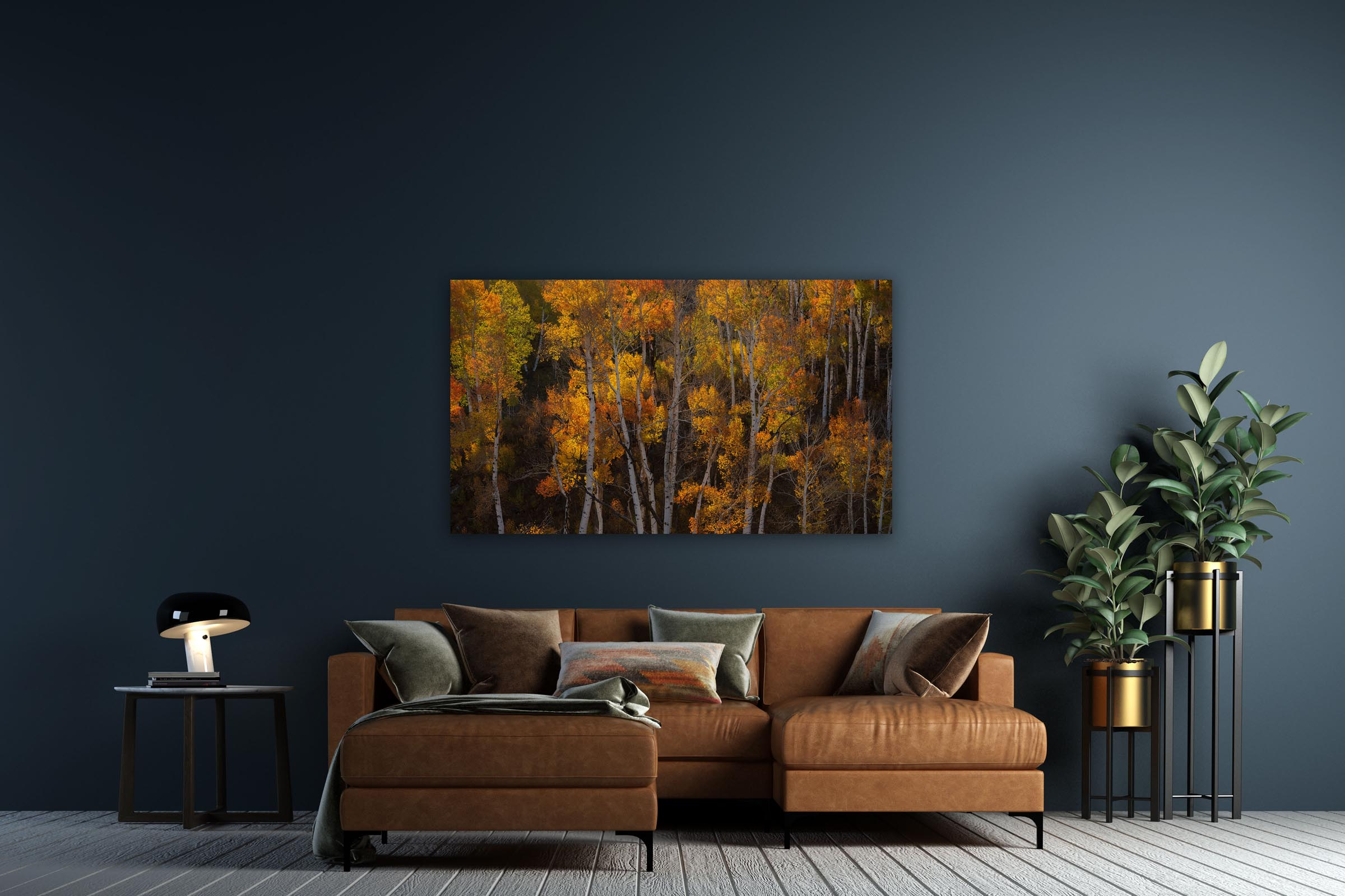 Wall art of Aspen Forest in San Juan Mountains, Colorado by Brent Goldman Photography