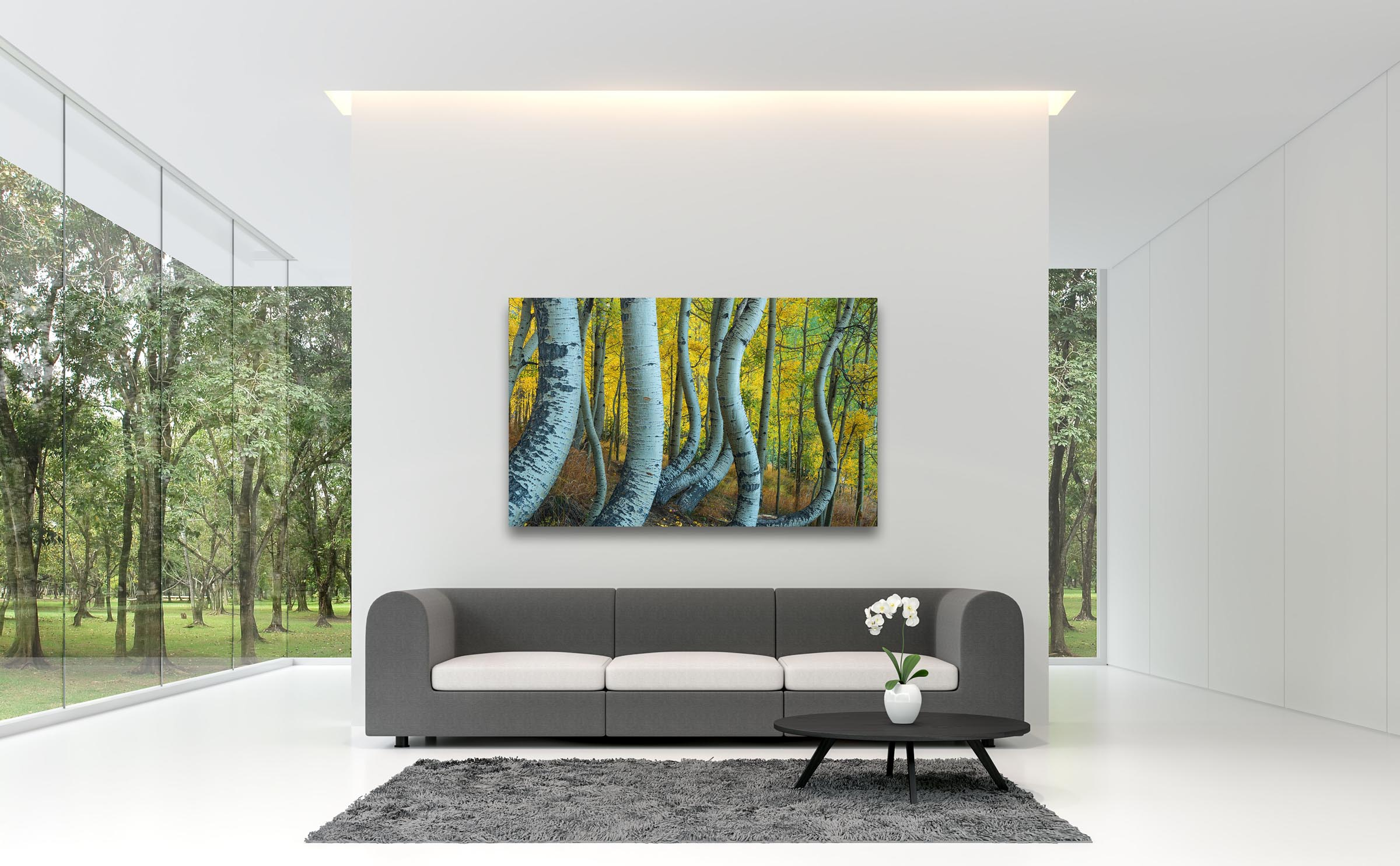 Wall art of Bent Aspens in San Juan Mountains, Colorado by Brent Goldman Photography