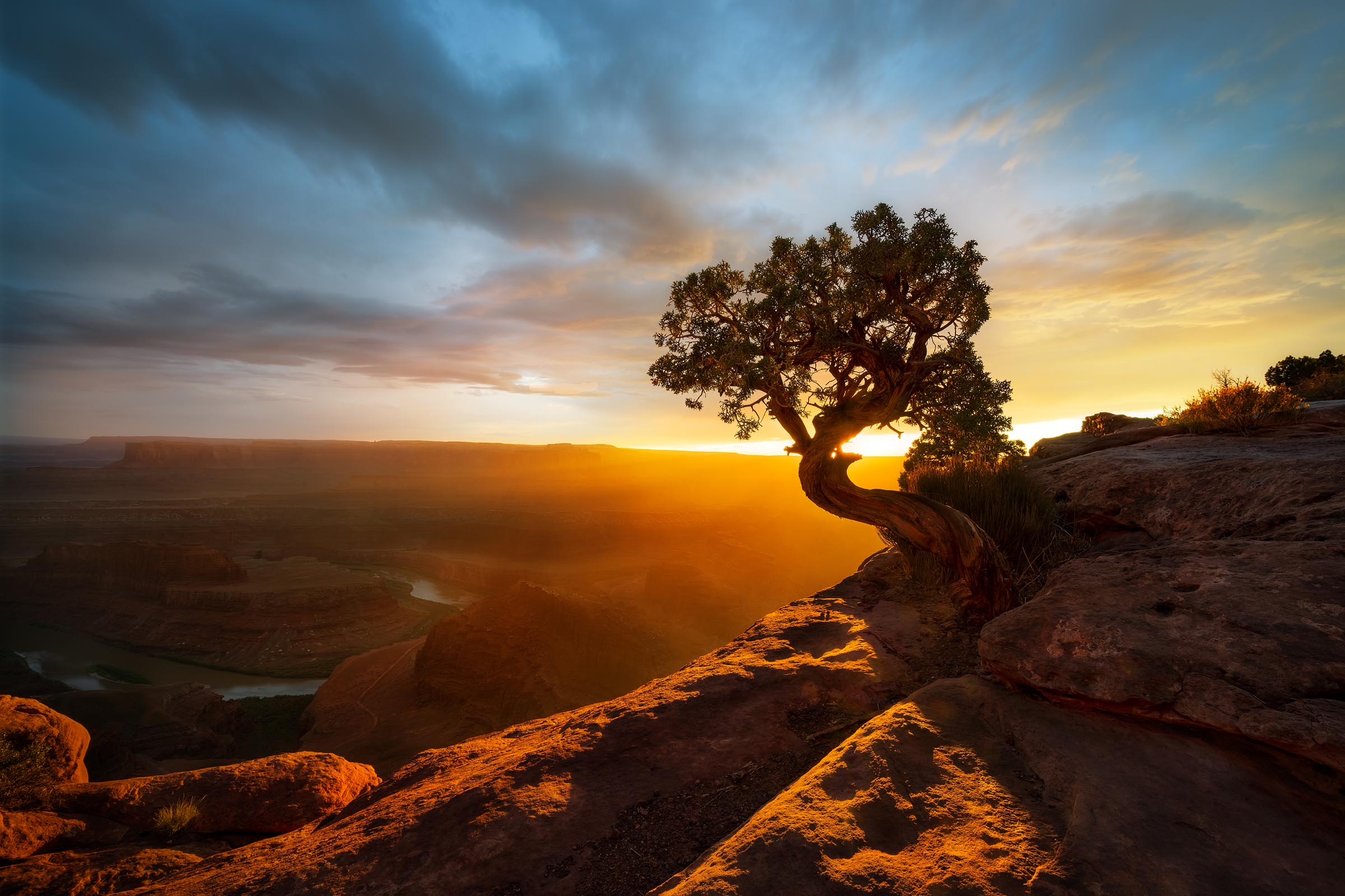 Photograph of Dead Horse in Dead Horse Point, Utah by Brent Goldman Photography