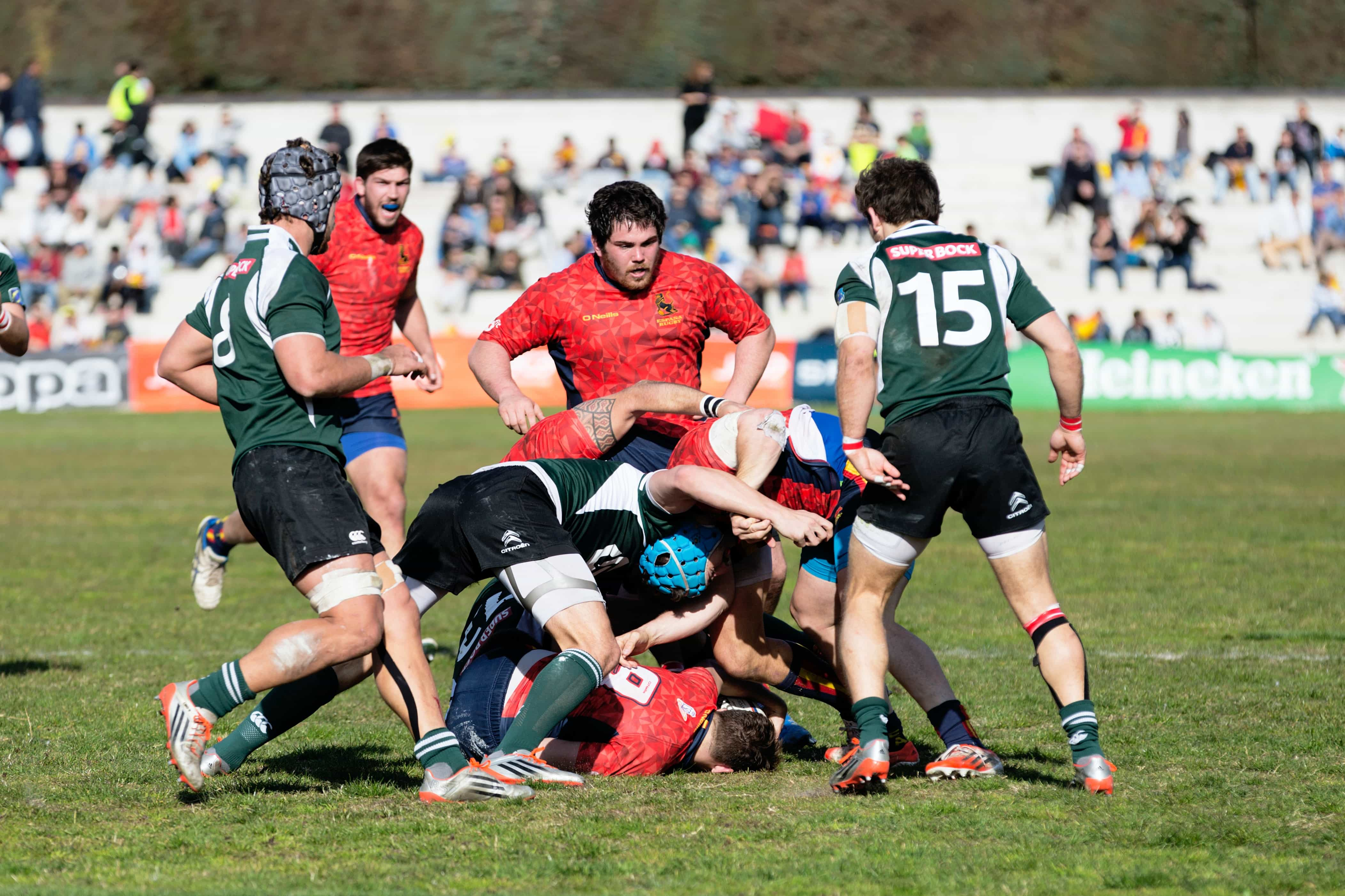 Rugby Crowd