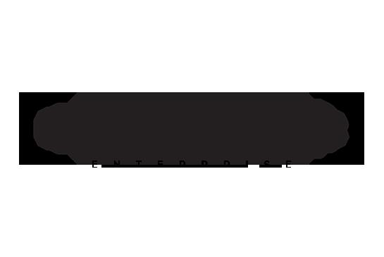 DocuXplorer Enterprise Logo