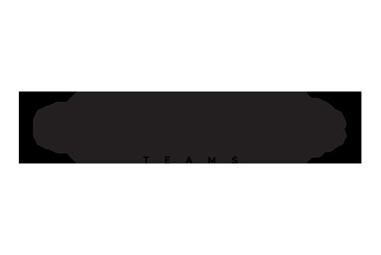 DocuXplorer Teams Logo
