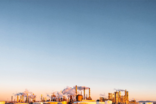 DMS for oil and gas industry