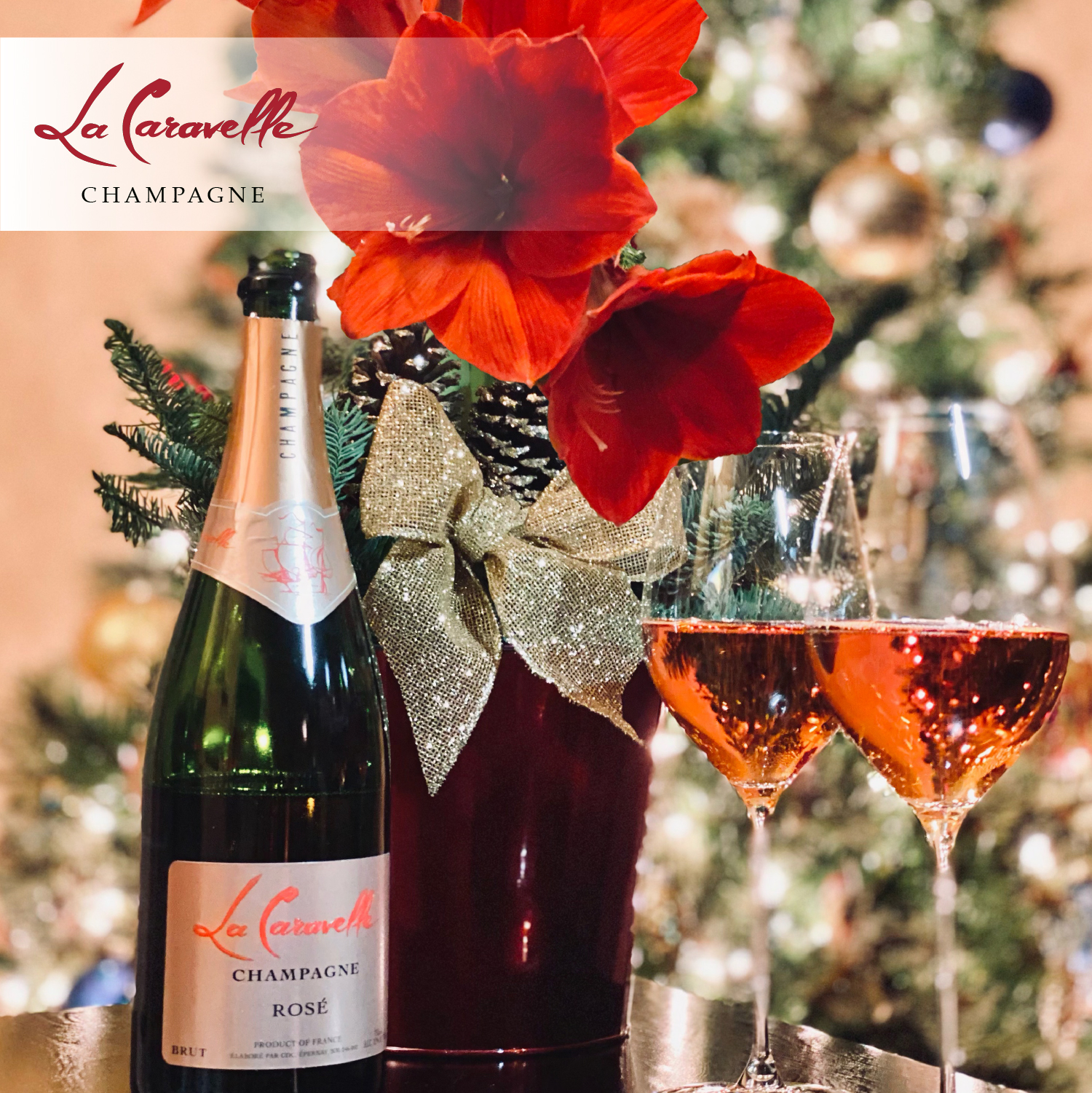 Send a beautiful and long-lasting red amaryllis plant. Watch it bloom over the season while enjoying a night of bubbles. Sip this wonderful and delightful Rosé by La Caravelle Champagne.
