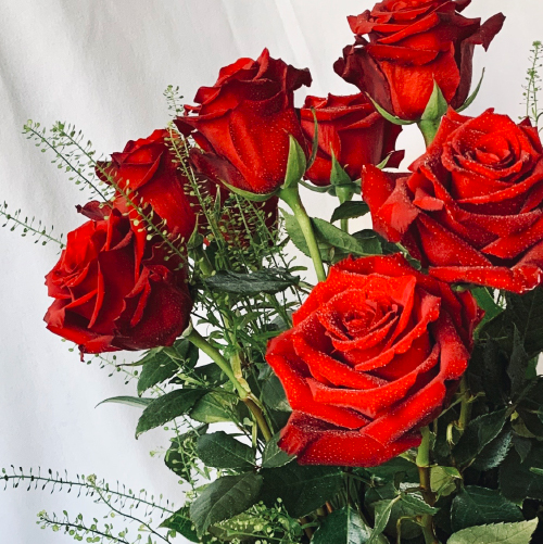 Just a timeless classic. Dozen of breathtaking red roses in a tall sophisticated vase. Options of two and three dozen are available. Chic Red Roses, Veronica, Lemon Leaf. Tall contemporary vase is included.