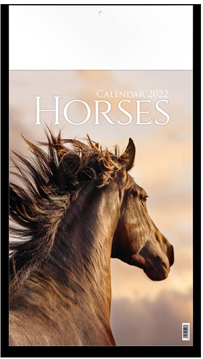 Horses - 12 feuillets avec couverture