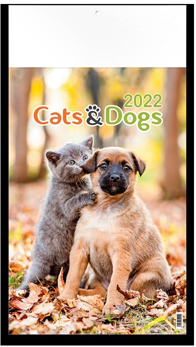 Cats & Dogs - 12 feuillets avec couverture