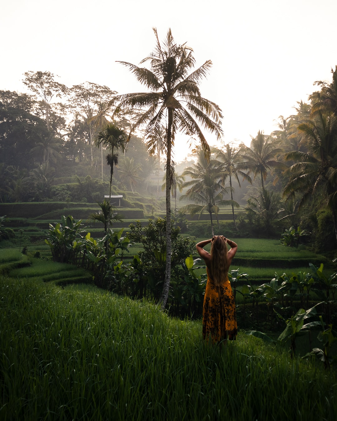 Travel picture by Danja Keller at the famous Tegallalang Rice Terrace in Bali, Indonesia She is wearing an orange dress.