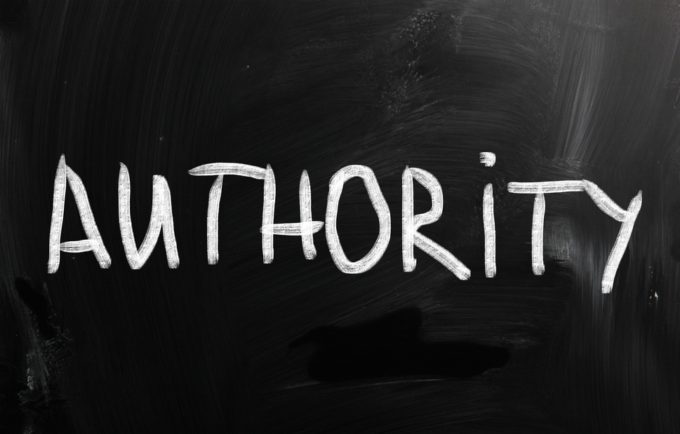 Authority bloggers has the knowledge and reputation