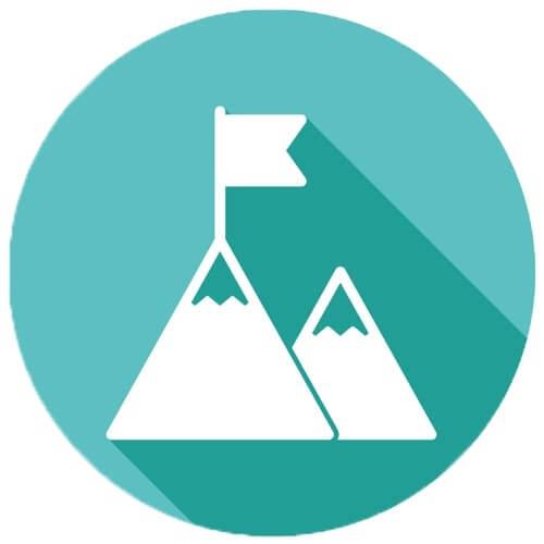 Marketing Service Icon