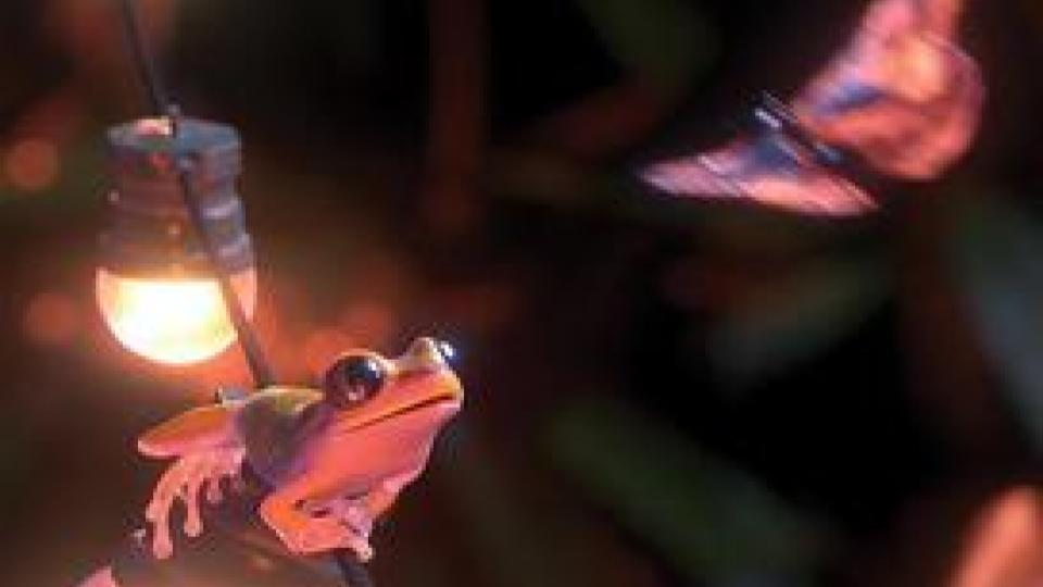 Garden Party is an Oscar-nominated short film animation that depicts a dark mystery slowly unraveling via the perspective of exotic frogs having a grand time in an opulent, but empty mansion.