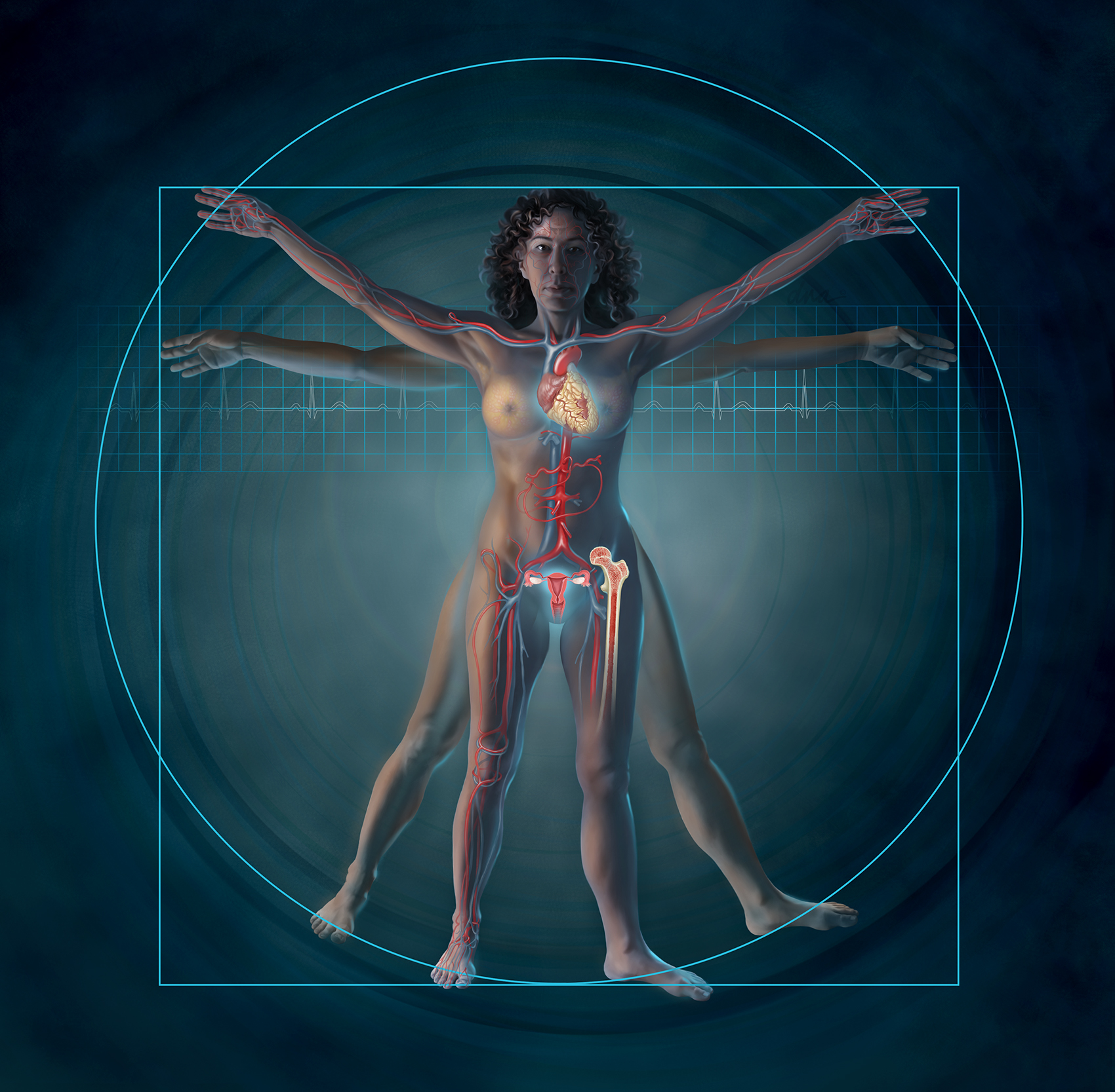 Vitruvian Woman