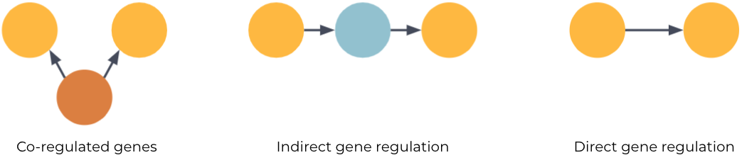 causal and direct gene regulation (fig 1C) from the confounding transcriptional co-regulation of genes (fig 1A) and indirect regulation (fig 1B)