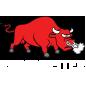 Roadmaster Logo