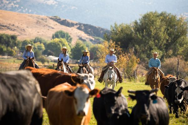 ranch at the bsk