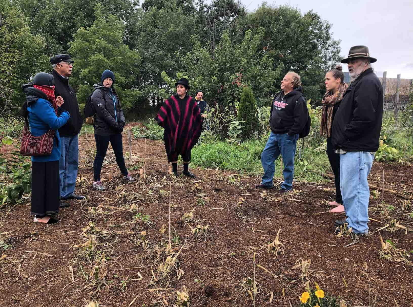 Native american healing garden