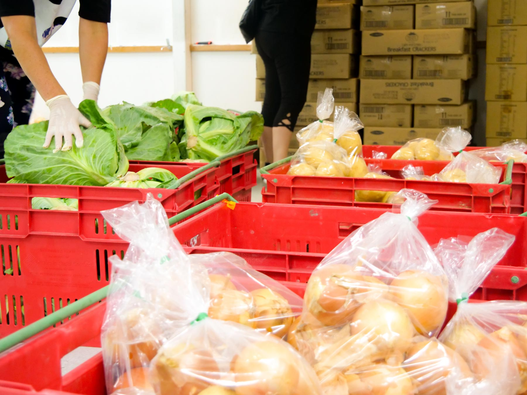 Healthy food being packed in a warehouse