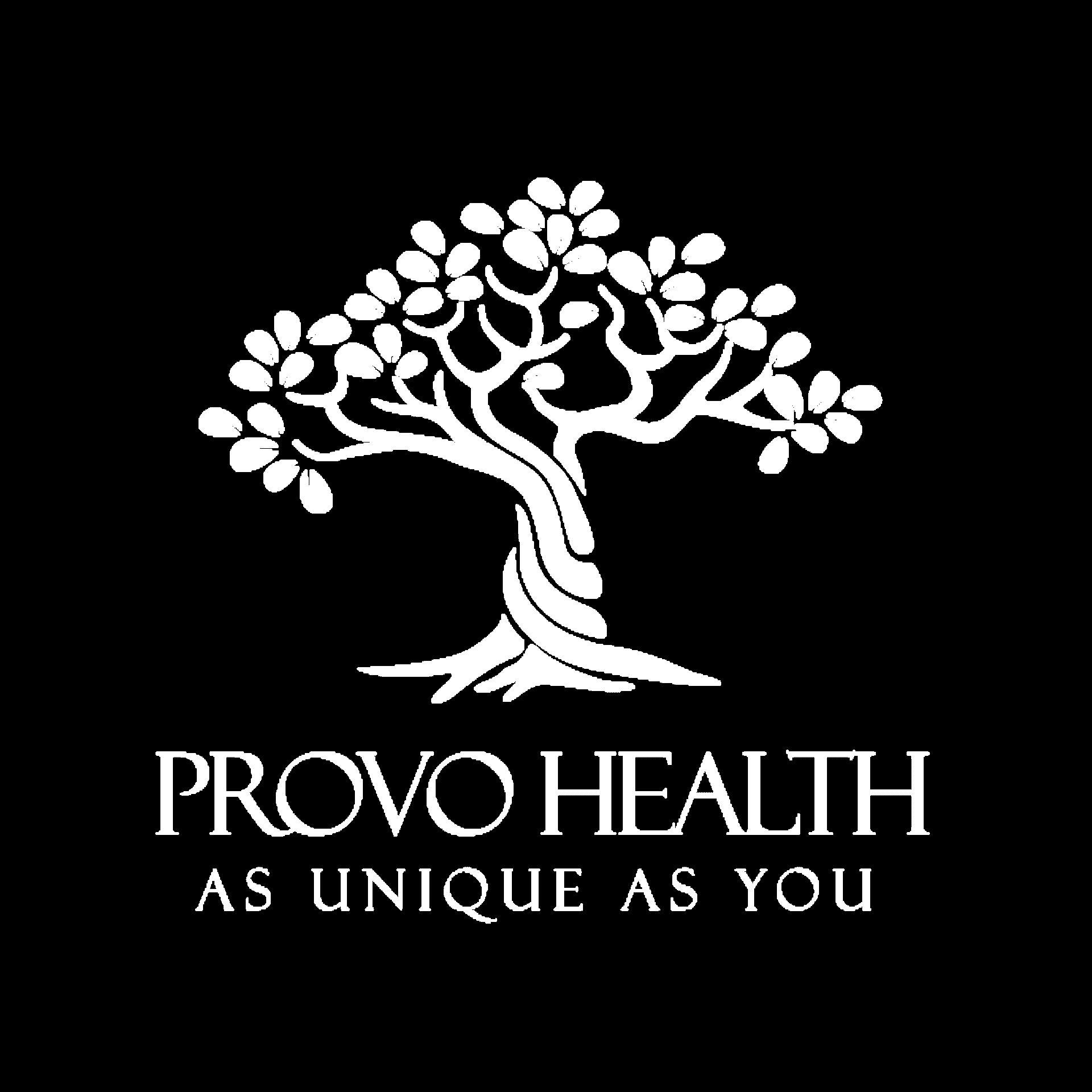 Provo Health Logo