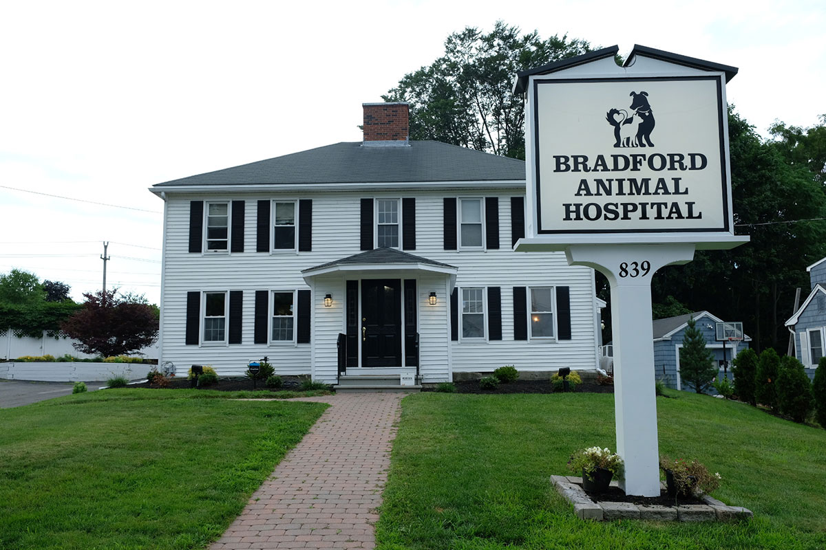 photo of our animal hospital