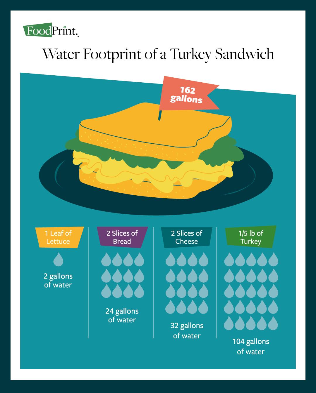 water footprint vegetables