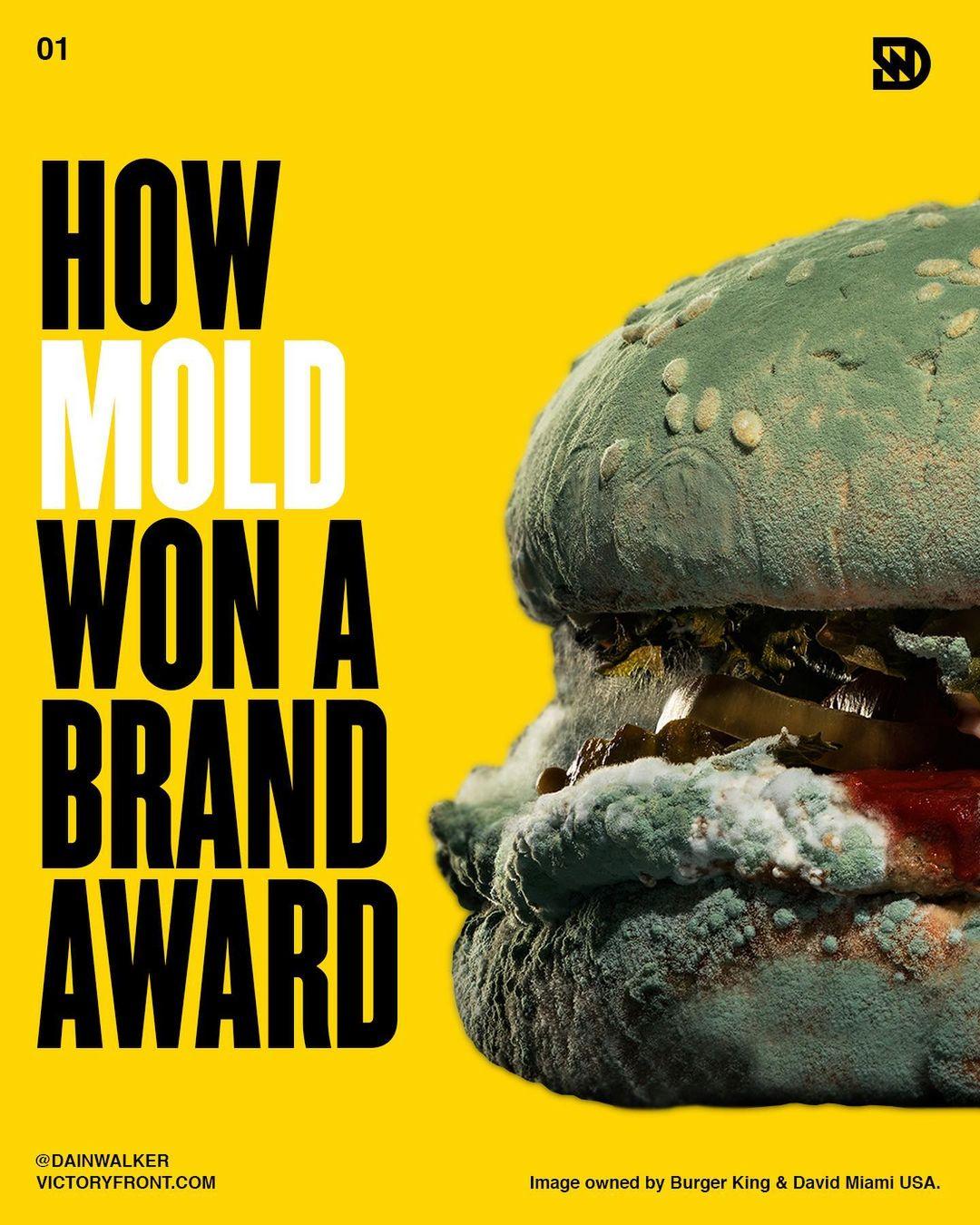How Mold Won A Brand Award