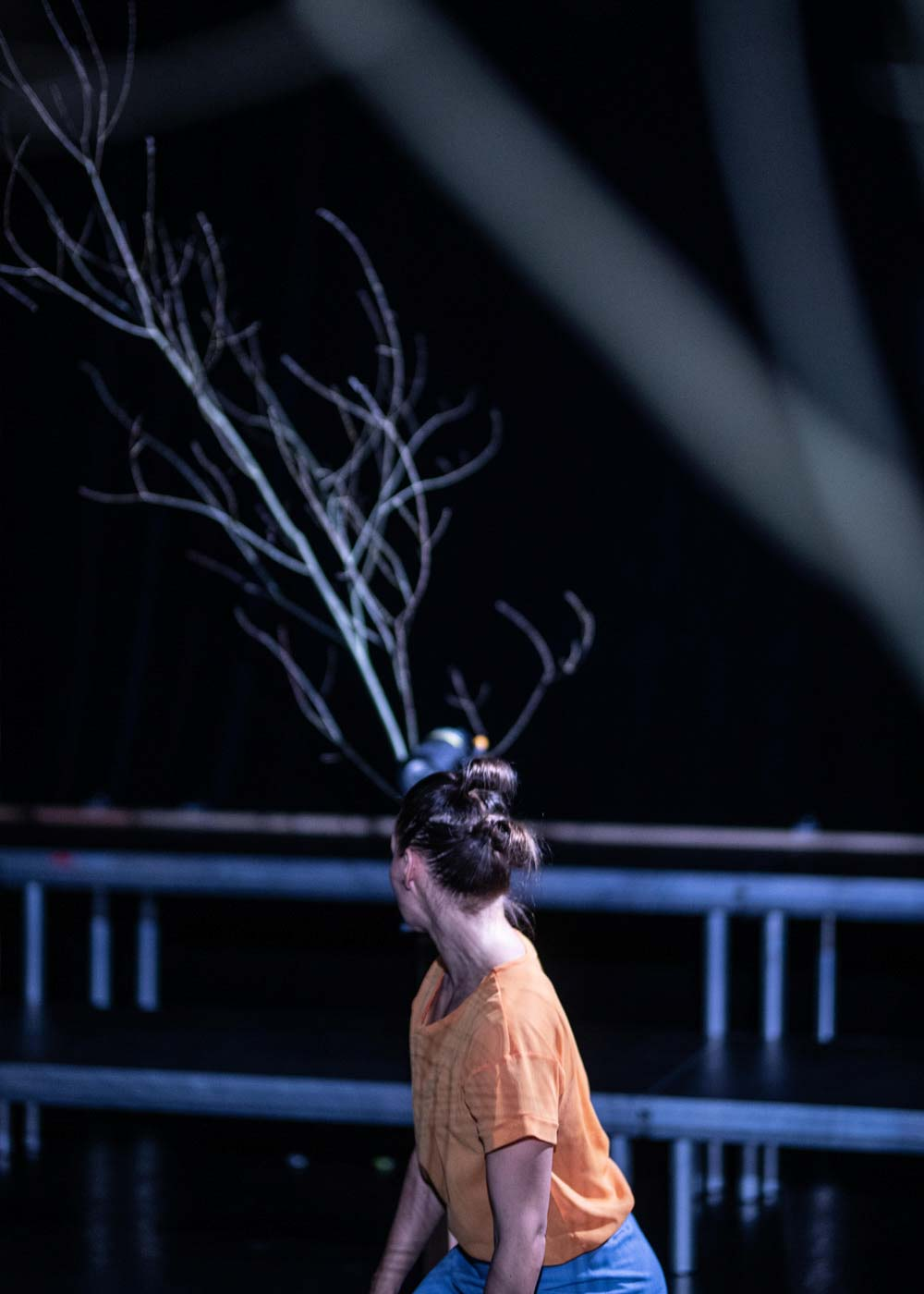 Anna Kempin, looking towards dance performance decoration, which is a tree branch