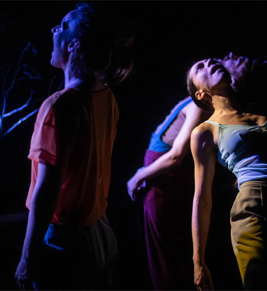 Video preview of Vox dance performance of Anna Kempin, Colas Lucot, Marie Viennot, choreographed by David Hernandez