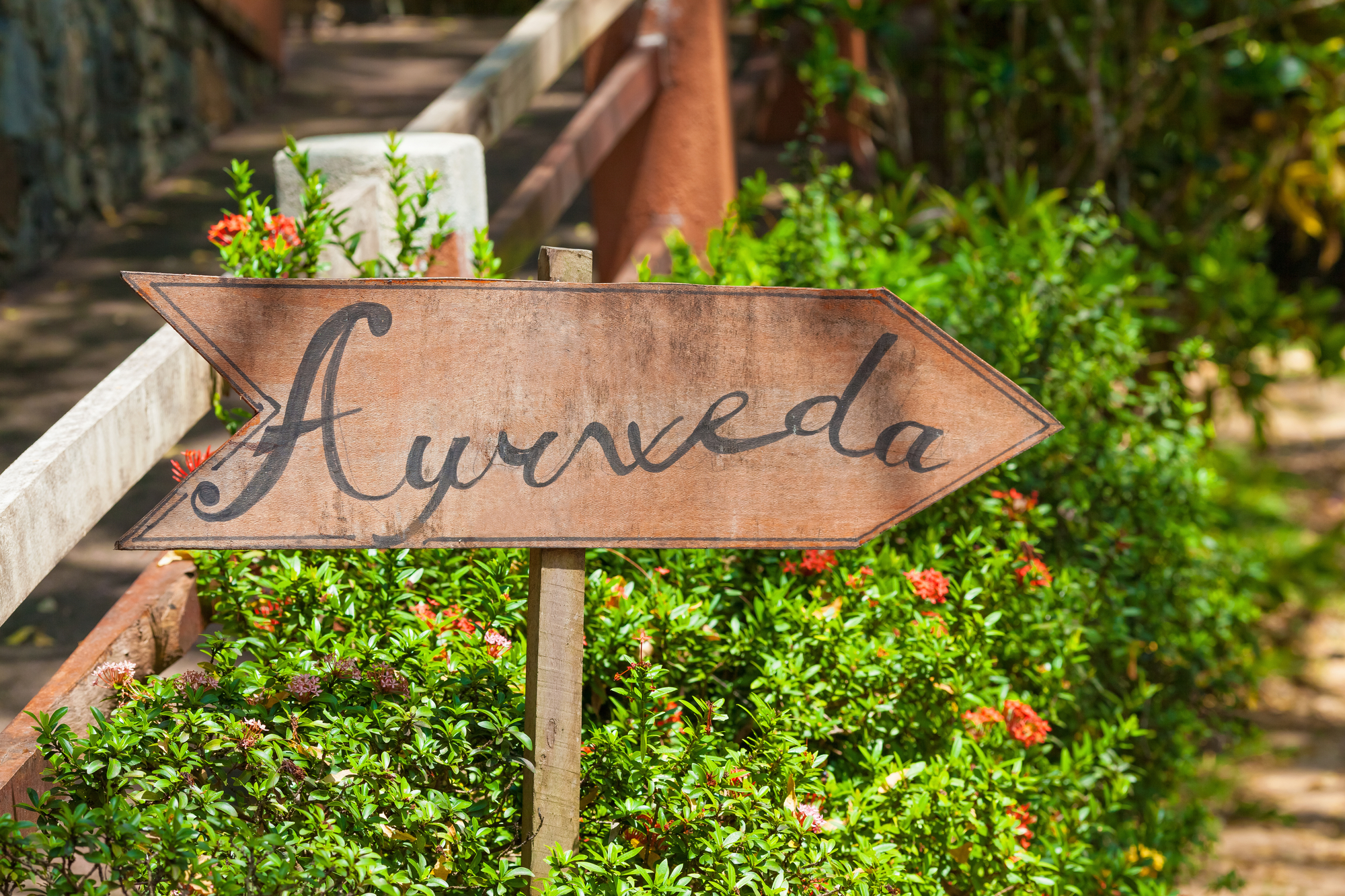 5 key factors for staying healthy using the wisdom of Ayurveda